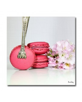 Tableau photo macaron rose