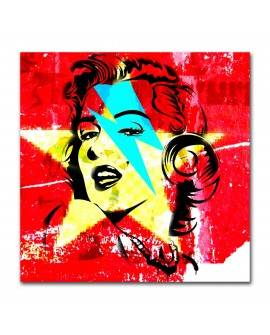 Plexiglass star Marylin