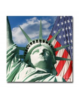 Tableau plexiglass New York Freedom and Flag
