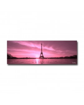 Tableau plexiglass Design Paris Rose