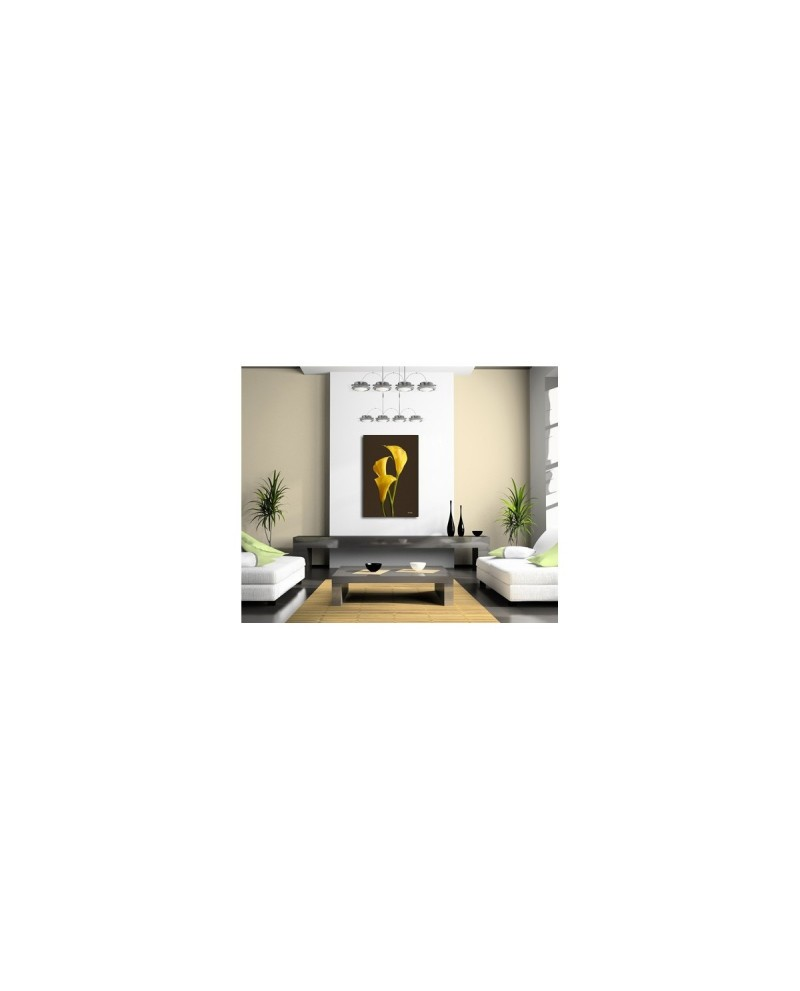 tableau plexiglass design arums jaunes boniday imprimeur d 39 image. Black Bedroom Furniture Sets. Home Design Ideas