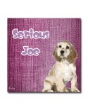 Plexiglass dog Joe Pink