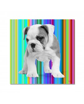 Tableau  chien Brad rayures multi